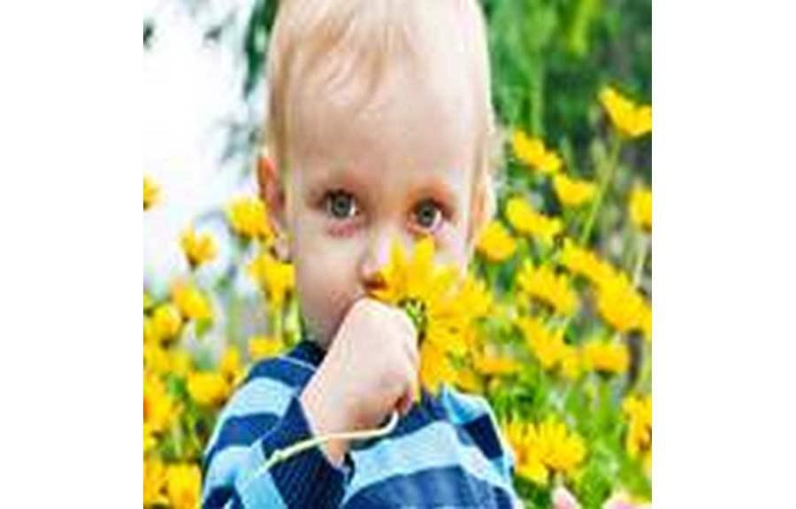 Аллергия у детей, Поллиноз