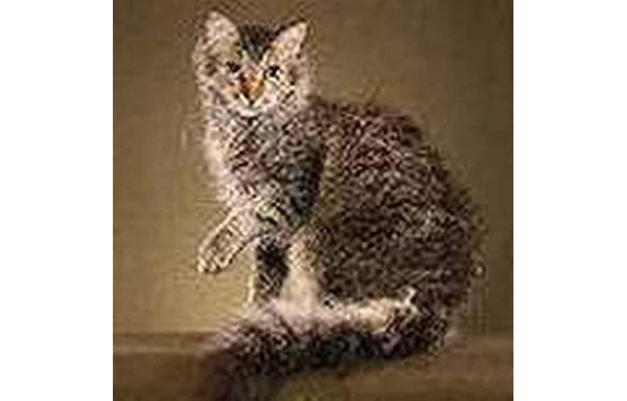 Кошки породы ла-перм