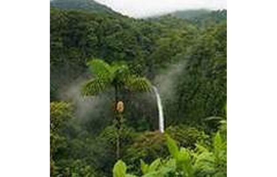 Отдых в КостаРике