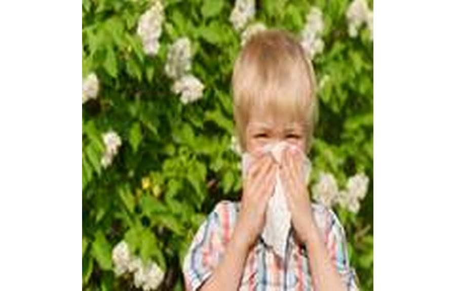 Почему возникает аллергия у детей