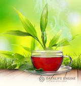 Монастырский чай от диабета - по какой причине он так полезен?