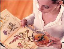 Растений, используемые при болезнях «ЖКТ»